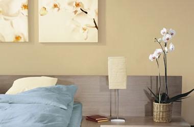 Kolor ścian do mebli w kolorze śliwa
