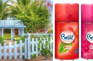 Zapachy do mieszkania – kwiatowy, owocowy, morski – dobre ma lato