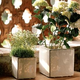 wobeline , donica na kwiaty