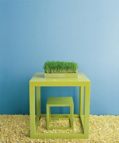 Ściany pomalowane farbą Super Spec Green, Benjamin Moore