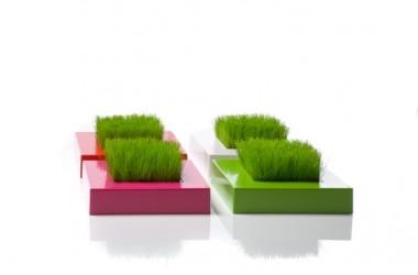Wiosna w domu – mini ogródek na stole, komodzie, biurku