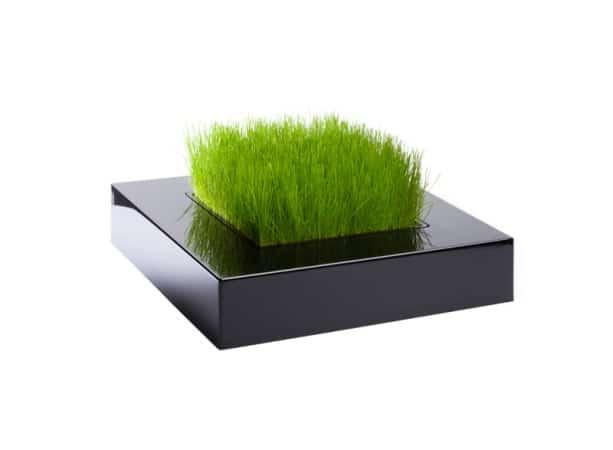 Pojemnik Chlorophylle, grafitowy, Fabryka Form