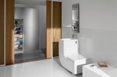 Toaleta i umywalka połączone
