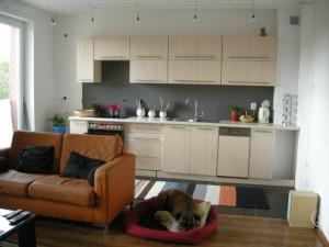 Małe mieszkanie - pomysły na aneks kuchenny