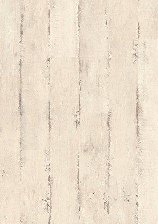 Dąb malowany, biały, ze śladami cięcia