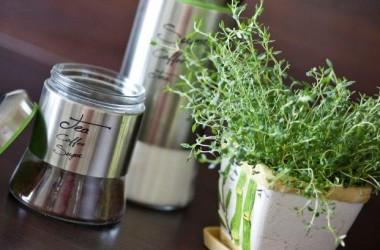 Rośliny w domu; osłonki i donice