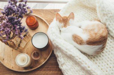 Styl hygge – przytulność i wygoda