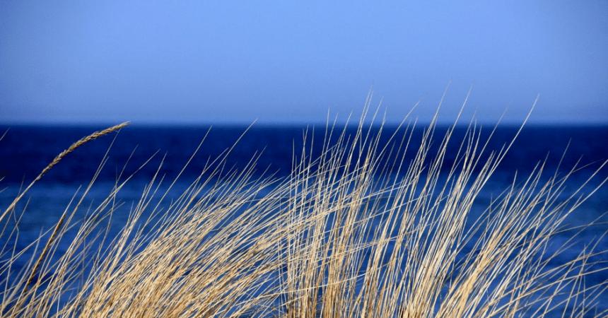 Dochód pasywny w postaci mieszkania nad morzem